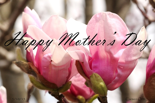 Happy Mother's Day ~ May 10, 2015